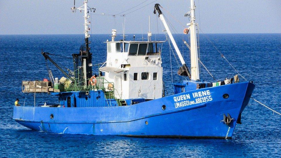 Deşi are deschidere la Marea Neagră şi numeroase ape interioare, România consumă 80% peşte de import