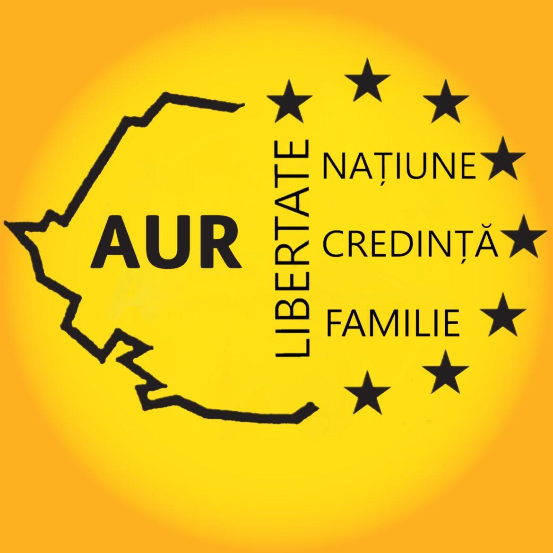Deputat AUR spune că parlamentarii partidului donează bani benevol: 'Am fost tâmpit când am crezut că Șoșoacă e de bună-credință'