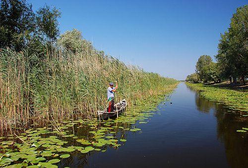 Unde a ajuns miliardul de euro de la UE pentru Delta Dunării. Oamenii care controlează bani