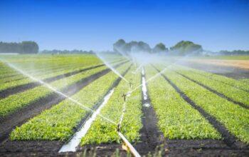 Ssitem de irigatii agricultura 1024x613 1