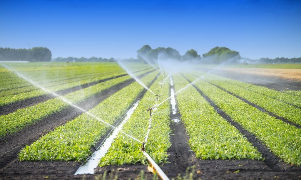 Guvernul pierde finanțarea europeană pentru sistemele de irigații, deși seceta distruge agricultura românească
